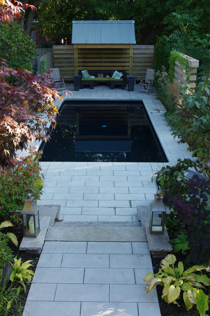 1000 images about swimming pools for small yards on for Small pools for small yards